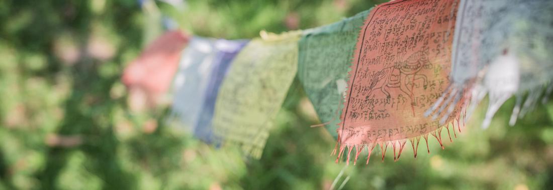 Tibetische Gebetsfahnen flattern im Wind vor grünem Hintergrund.